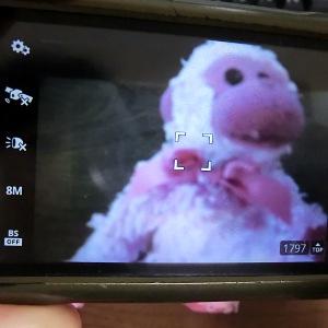 アンドロイドのカメラアプリ。撮影ボタンの説明と注意点