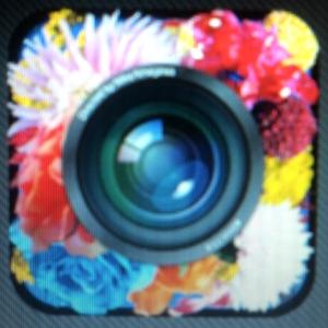 適当に撮った風景写真が、蜷川マジックで大変身!蜷川実花監修のカメラアプリ「cameran」で5つの被写体を撮ってみた