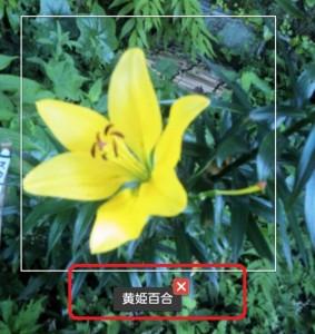 IMG_20130710_003421