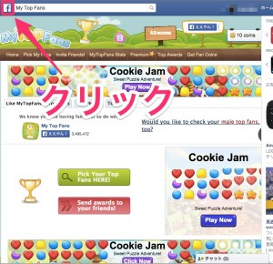FacebookのMy_Top_Fans 6